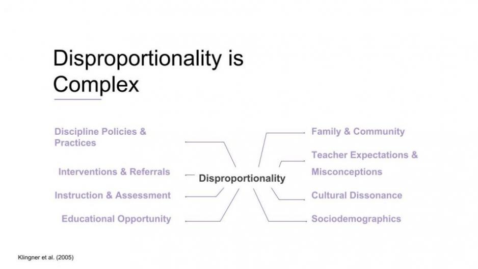 Diagram of Causes of Disproportionality