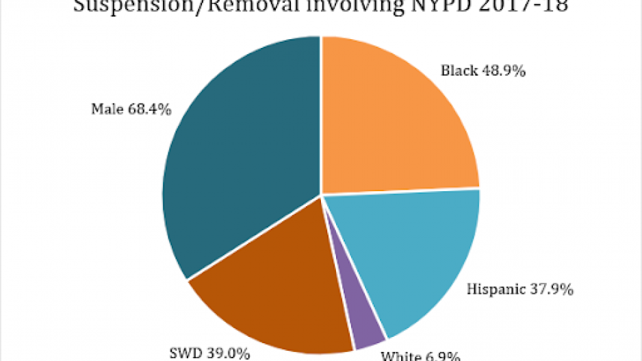 Pie chart of removal involving NYPD