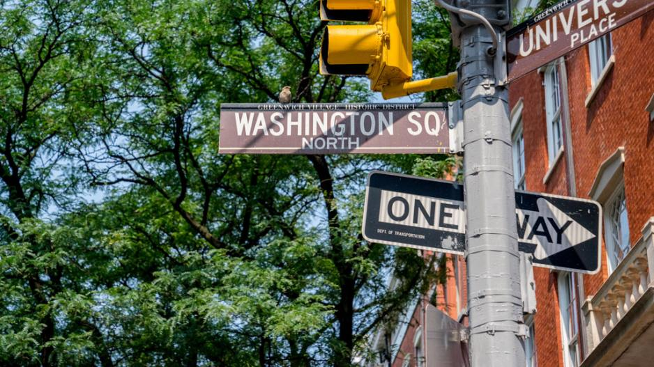 Washington Square street signs and stop lights against a backdrop of green trees
